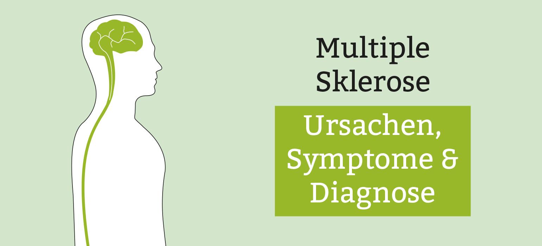 Bildergebnis für symptome ms