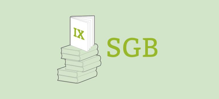 SBG IX
